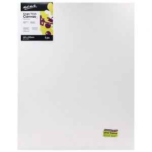 Single Thick Canvas Discovery 30 x 40cm (11.8 x 15.7in) 5pc