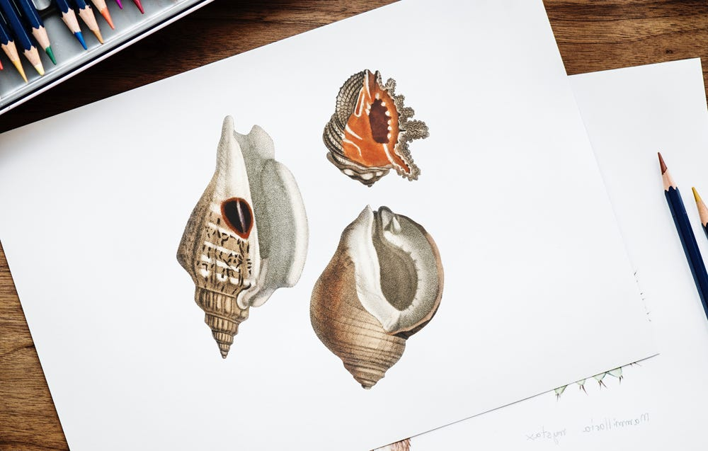 15 drawing ideas that anyone can try image 8